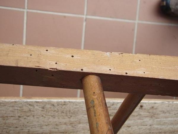 C mo combatir la carcoma carpintero elche - Como combatir la carcoma ...